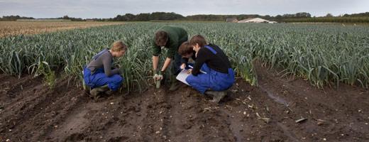 BAC PRO Agroéquipement par apprentissage